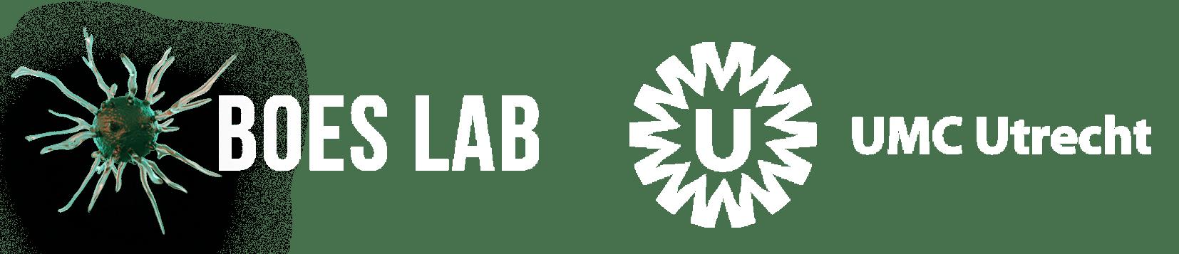 Boes Lab
